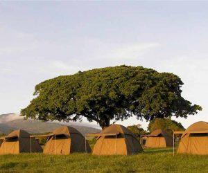 Simba-campsite